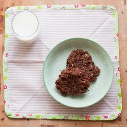 bizcochos de chocolate y avena